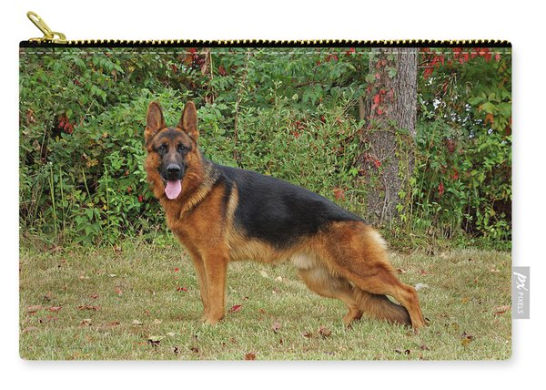 Handsome Rocco Carry-all Pouch