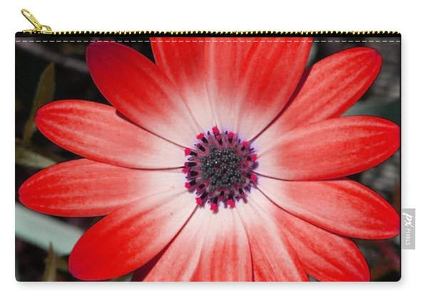 Carry-all Pouch featuring the photograph Happy Birthday Carl by Mr Photojimsf