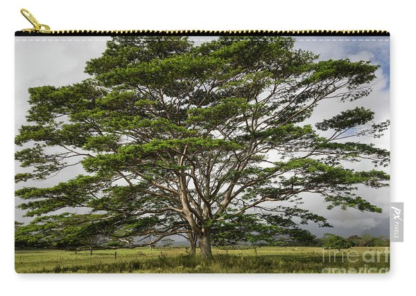 Hawaiian Moluccan Albizia Tree Carry-all Pouch