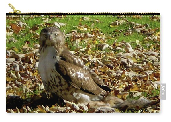 Hawk Falling Leaves Carry-all Pouch