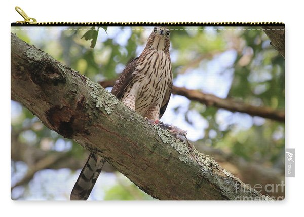 Hawk On A Branch Carry-all Pouch