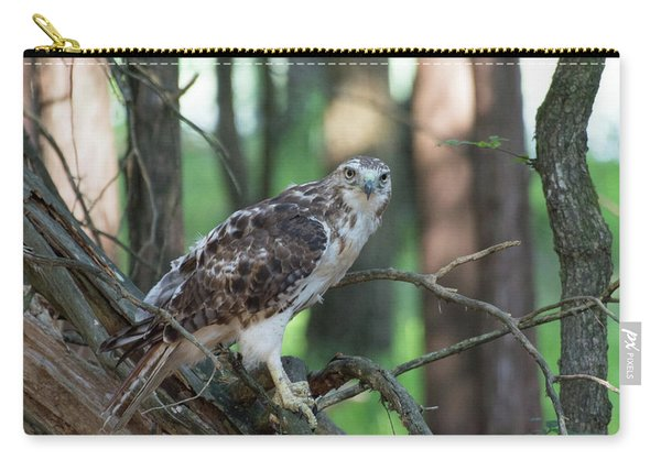 Hawk Portrait Carry-all Pouch