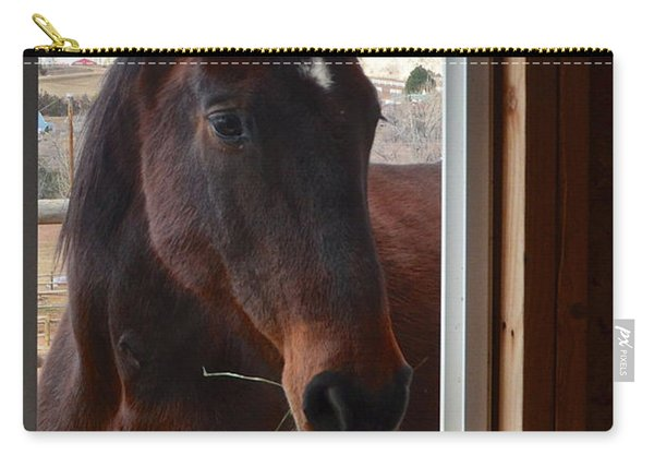 Hay There Carry-all Pouch