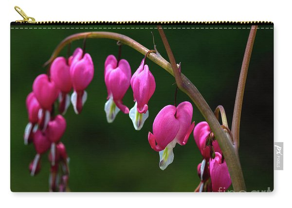 Hearts On A String Carry-all Pouch