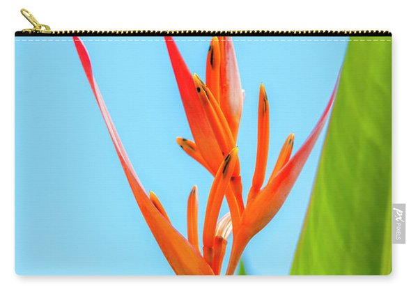 Heliconia Flower Carry-all Pouch