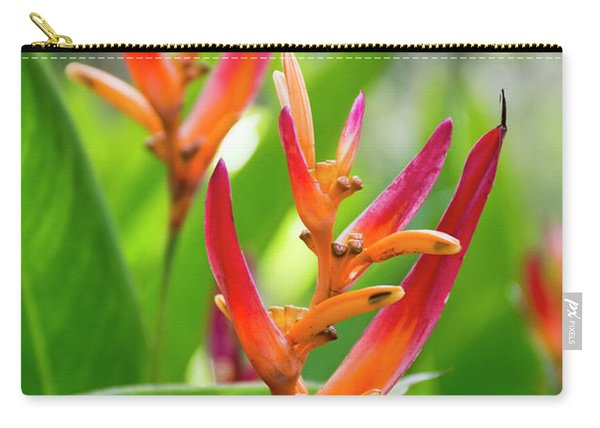 Heliconia Psittacorum Carry-all Pouch
