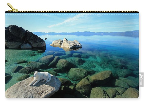 Carry-all Pouch featuring the photograph Hello Gorgeous by Sean Sarsfield