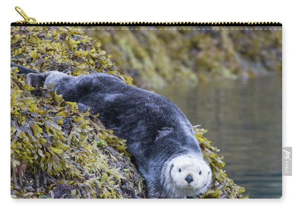 Hello Sea Otter Carry-all Pouch