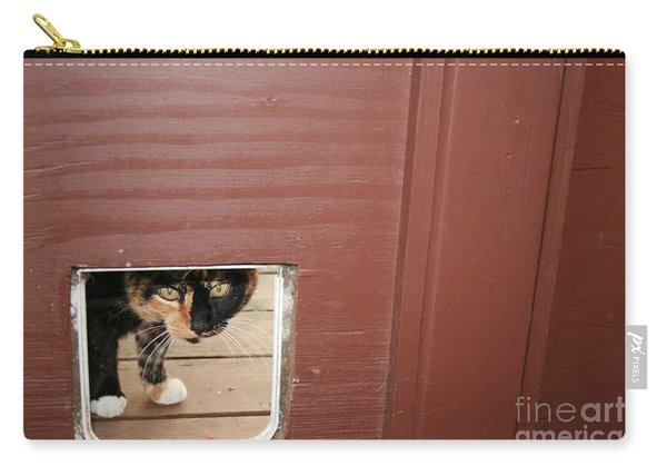 Carry-all Pouch featuring the photograph Curly Peeking by Cynthia Marcopulos