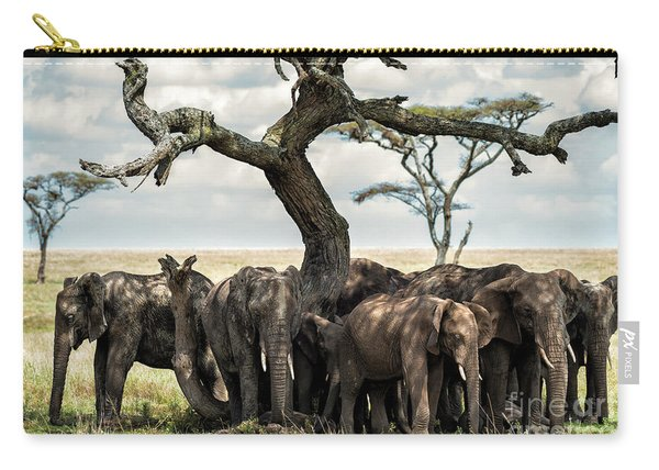 Herd Of Elephants Under A Tree In Serengeti Carry-all Pouch