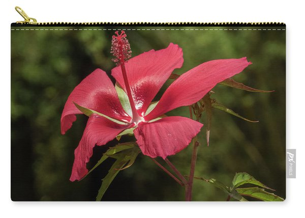 Hibiscus Coccineus 1 Carry-all Pouch