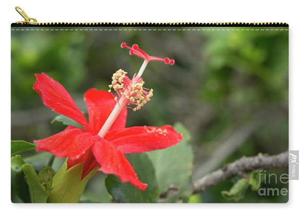 Hibiscus Kokio Ula Ula Carry-all Pouch