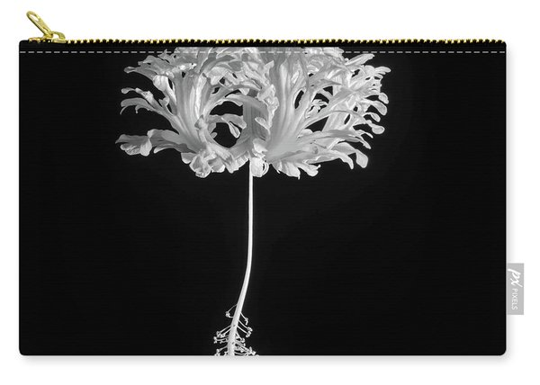 Hibiscus Schizopetalus Against A Black Background In Black And White Carry-all Pouch