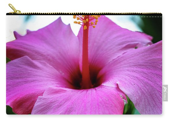 Carry-all Pouch featuring the photograph Hibiscus by Tom Singleton