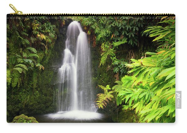 Hidden Waterfall Carry-all Pouch