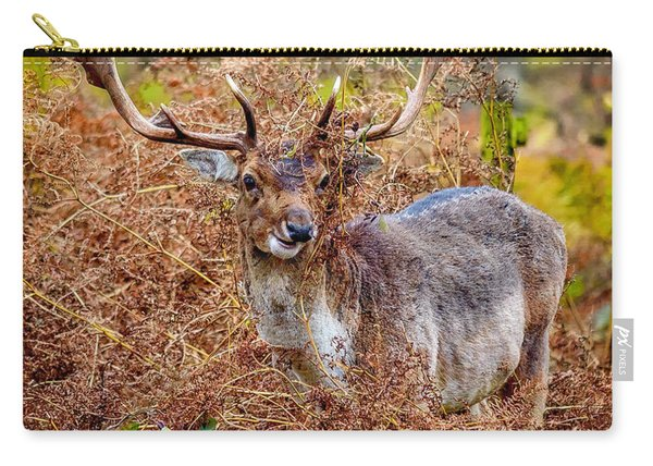 Carry-all Pouch featuring the photograph Hiding In The Bracken by Nick Bywater