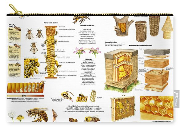 Honey Bees Infographic Carry-all Pouch