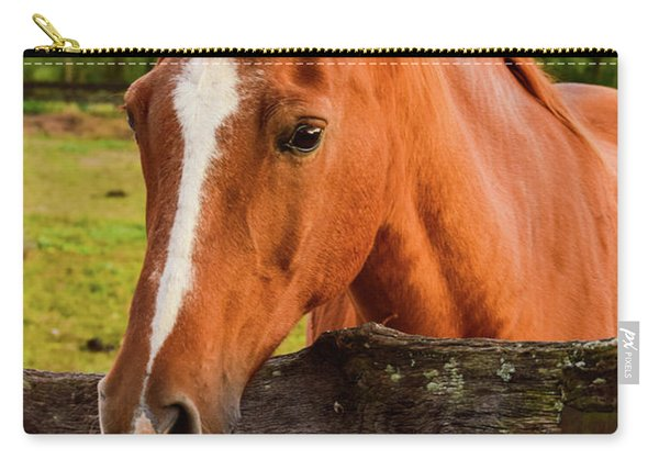 Horse Friends Carry-all Pouch