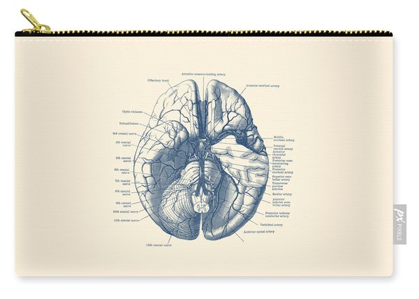 Human Brain Diagram - Anatomy Poster Carry-all Pouch