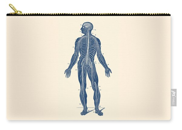 Human Lymphatic System - Vintage Anatomy Carry-all Pouch