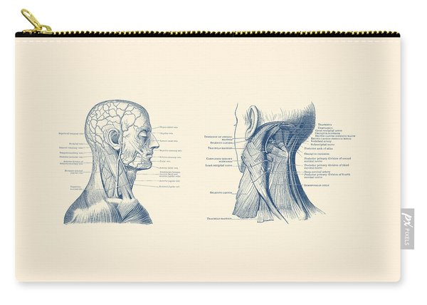 Human Venous And Circulatory Systems - Head And Neck Carry-all Pouch