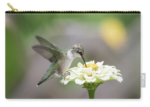 Hummingbird 2016-2 Carry-all Pouch