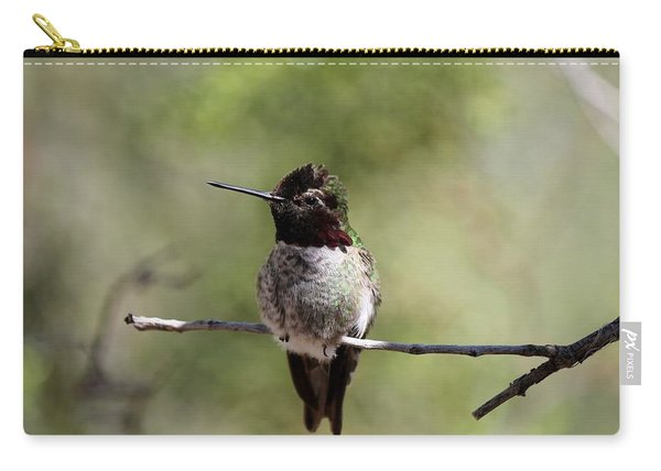 Carry-all Pouch featuring the photograph Hummingbird - 5 by Christy Pooschke