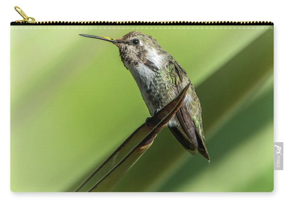 Hummingbird 7484-101017-2cr Carry-all Pouch