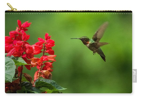 Hummingbird And Scarlet Sage Carry-all Pouch