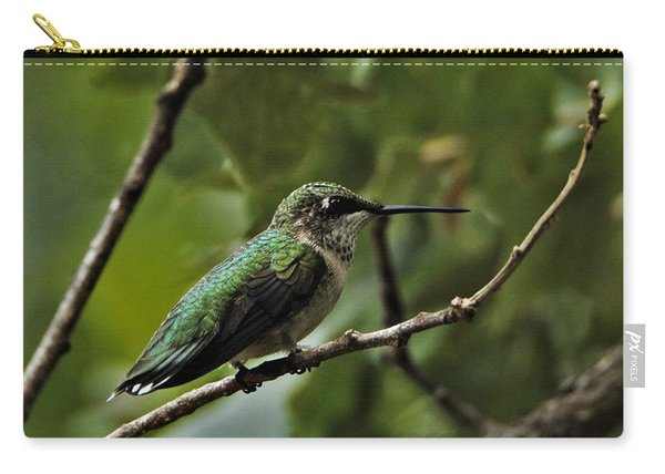Hummingbird On Branch Carry-all Pouch