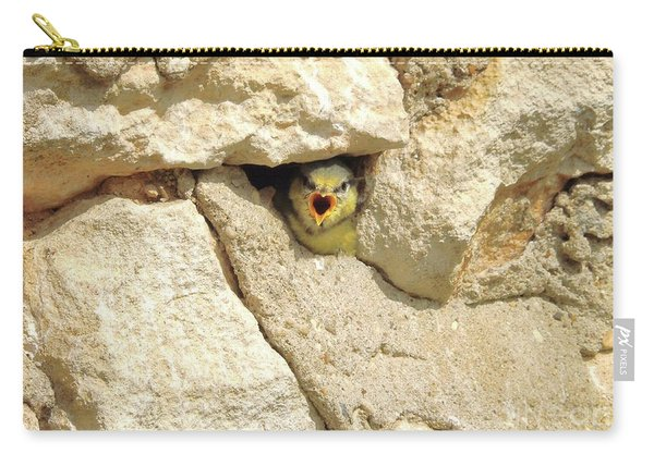 Hungry Chick Carry-all Pouch