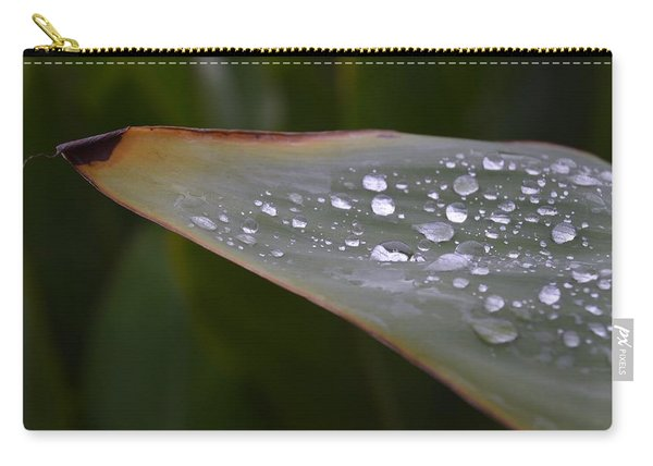 Hurricane Raindrops Carry-all Pouch