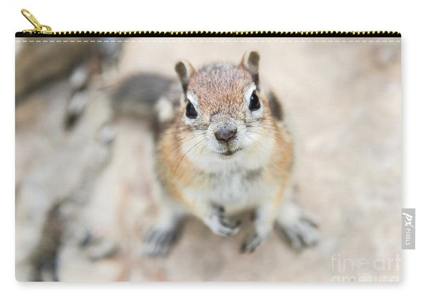 Hypno Squirrel Carry-all Pouch