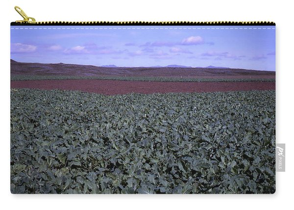 Icelandic Field Of Rutabaga Carry-all Pouch