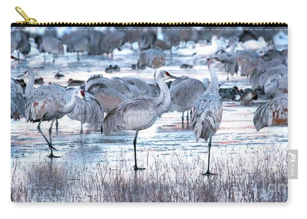 Carry-all Pouch featuring the photograph Icy Stroll by Susan Warren