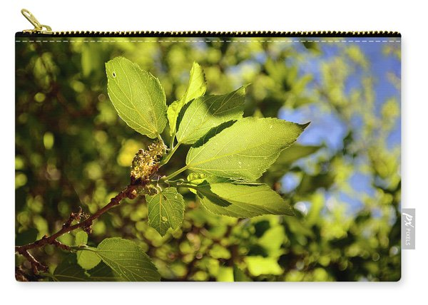 Illuminated Leaves Carry-all Pouch