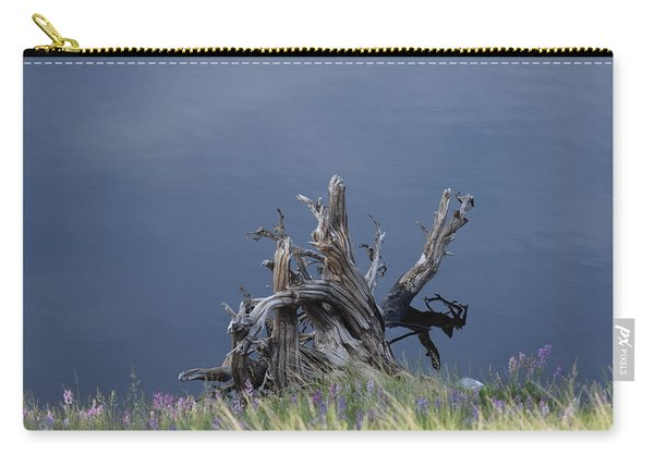Stump Chambers Lake Hwy 14 Co Carry-all Pouch