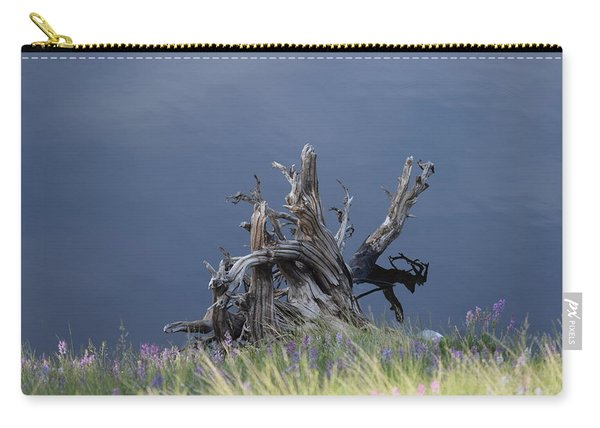 Carry-all Pouch featuring the photograph Stump Chambers Lake Hwy 14 Co by Margarethe Binkley