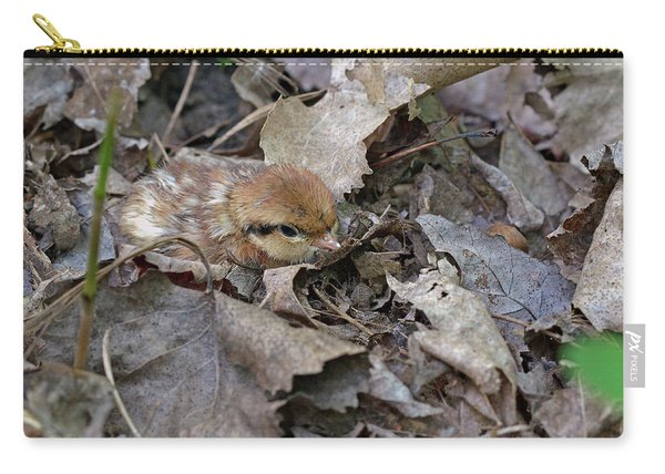 Innocent Look Carry-all Pouch