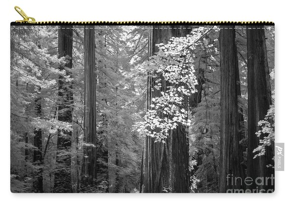 Inside The Groves Of The Redwoods Carry-all Pouch