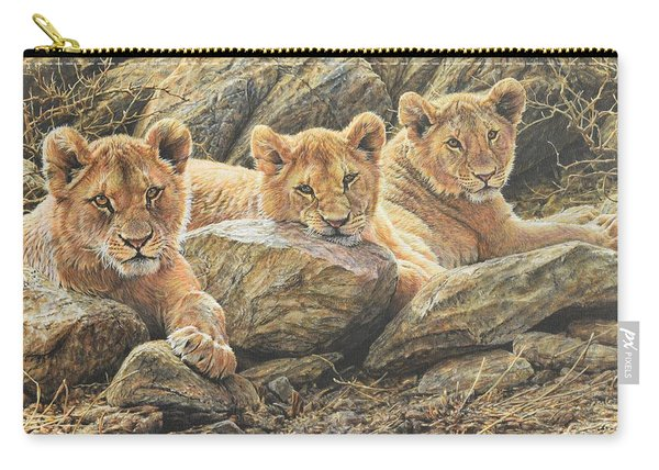 Carry-all Pouch featuring the painting Interrupted Cat Nap by Alan M Hunt
