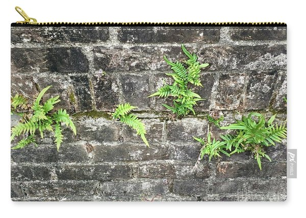 Intrepid Ferns Carry-all Pouch