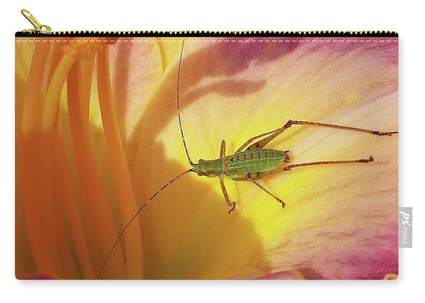 Investigating Bug Carry-all Pouch