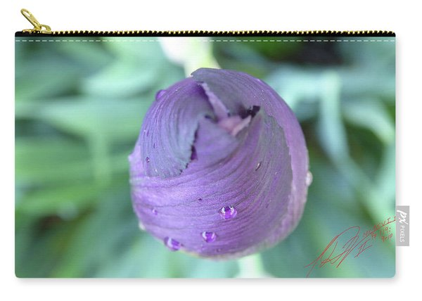 Iris After The Rain Vi Carry-all Pouch