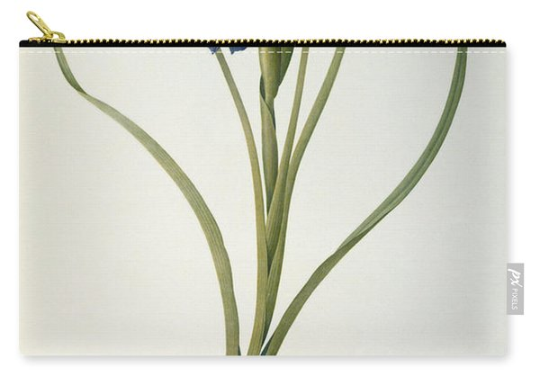 Iris Xyphioides Carry-all Pouch