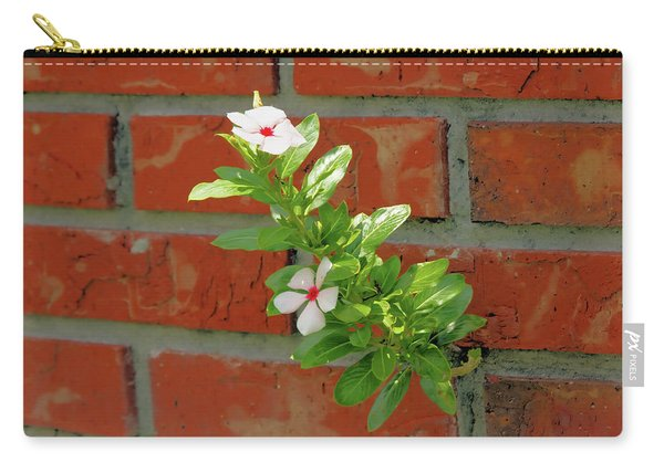 Irrepressible Carry-all Pouch