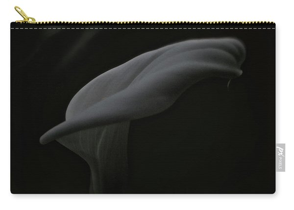 Is There A Ghost? Carry-all Pouch