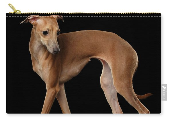 Italian Greyhound Dog Standing  Isolated Carry-all Pouch