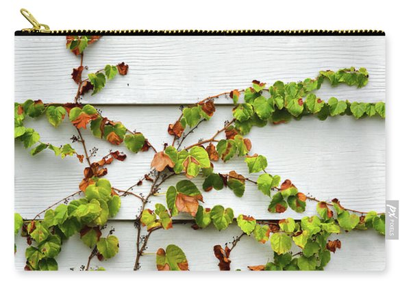 Ivy And Siding Carry-all Pouch