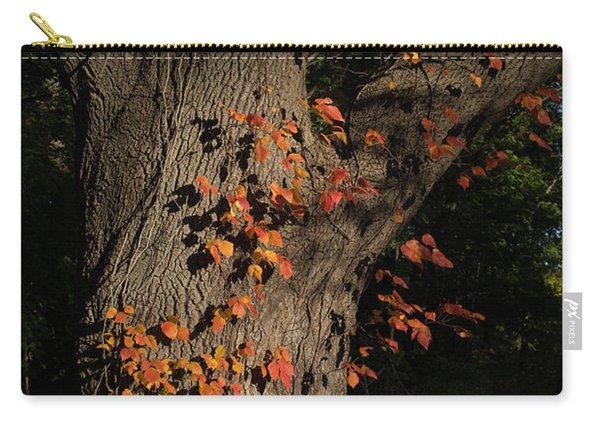 Ivy In The Fall Carry-all Pouch